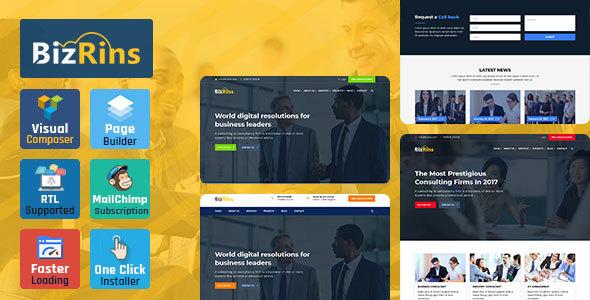 قالب BizRins - قالب وردپرس مشاوره کسب و کار