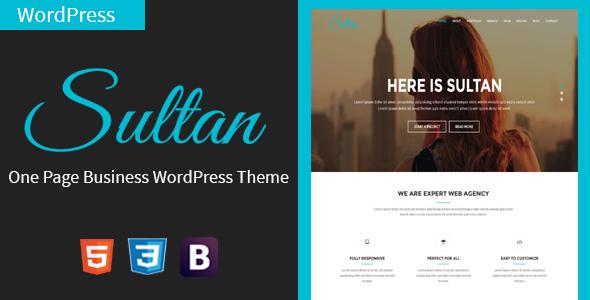 قالب Sultan - قالب تک صفحه ای وردپرس کسب و کار