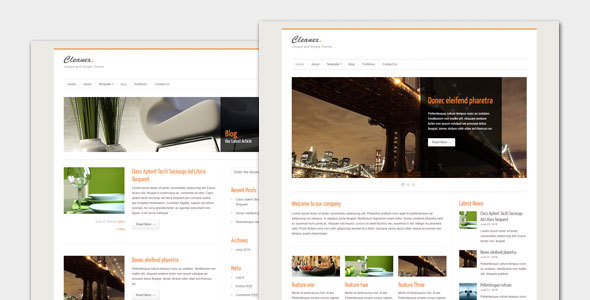 قالب Cleanex - قالب وردپرس کسب و کار