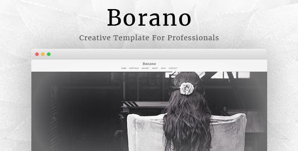 قالب Borano - قالب وردپرس عکاسی و نمونه کار