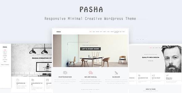 قالب Pasha - قالب وردپرس خلاقانه