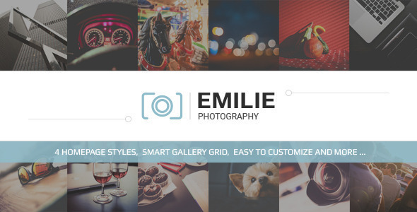 قالب Emilie - قالب وردپرس نمونه کار عکاسی
