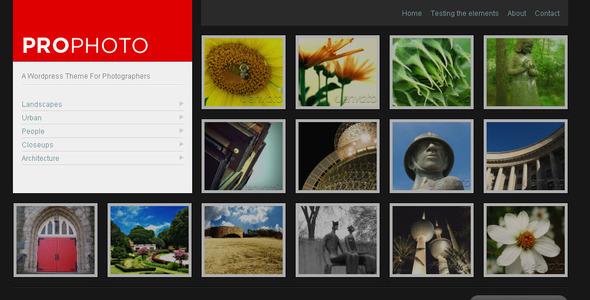 قالب WP ProPhoto - یک قالب وردپرس برای عکاسان