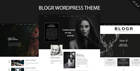 BLOGR - قالب وردپرس برای بلاگ نویسان خاص