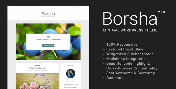 قالب Borsha - قالب وبلاگی مینیمال وردپرس