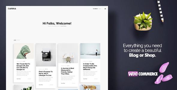 قالب Caprisa - قالب وردپرس بلاگ شخصی و فروشگاهی