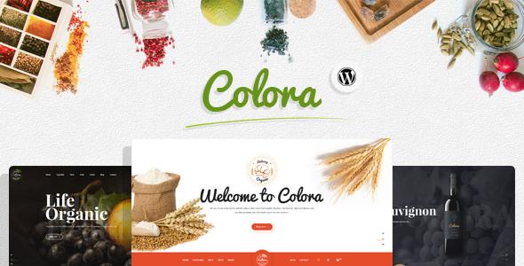 قالب Colora - قالب وردپرس فروشگاه موادغذایی اورگانیک