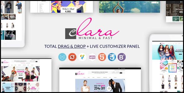 قالب WP Clara - قالب سایت چند منظوره ساده