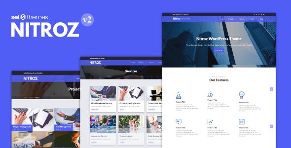 Nitroz - قالب وردپرس کسب و کار
