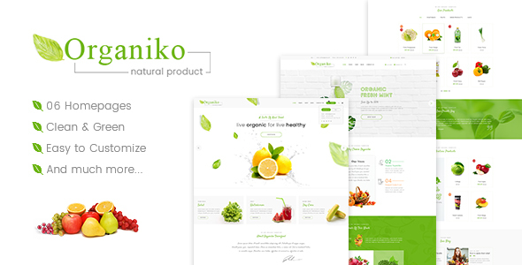 قالب Organiko - قالب وردپرس تجارت مواد غذایی