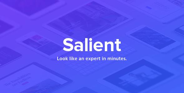 سالینت | Salient - قالب چند منظوره ریسپانسیو