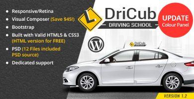 قالب دریکاب | DriCub - قالب وردپرس آموزشگاه رانندگی