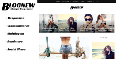 قالب Blognew - قالب وردپرس وبلاگی ساده