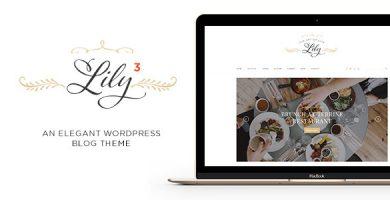 قالب Lily - قالب وردپرس بلاگی