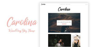 قالب Carolina - قالب وبلاگ وردپرس ساده