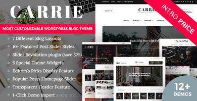 قالب Carrie - قالب وردپرس شخصی و مجله
