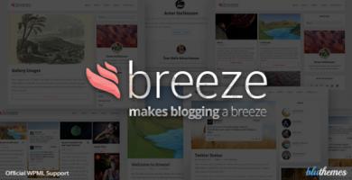 قالب Breeze - پوسته وردپرس بلاگ شخصی