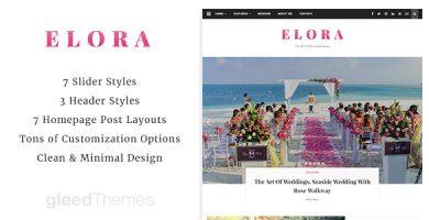 قالب Elora - قالب وردپرس مدرن و ساده وبلاگی