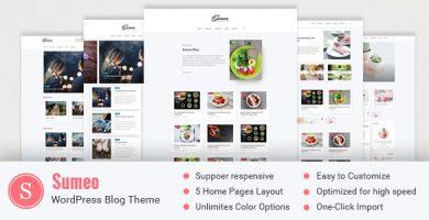 قالب Sumeo - قالب وردپرس بلاگ