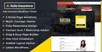 Auto Insurance - قالب وردپرس