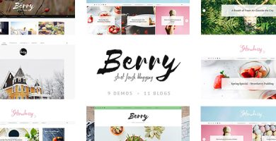 قالب Berry - قالب وردپرس بلاگ شخصی و فروشگاهی