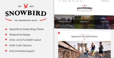 قالب SnowBird - قالب وبلاگ وردپرس