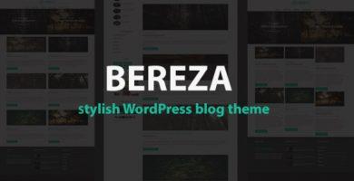 قالب Bereza - قالب وردپرس وبلاگی