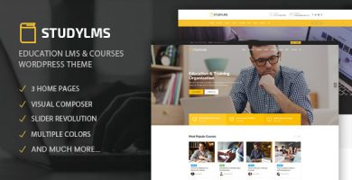 قالب Studylms - قالب وردپرس آموزش مجازی و دوره ی آنلاین