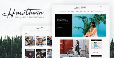 قالب Hawthorn - یک قالب وبلاگ و فروشگاه وردپرس
