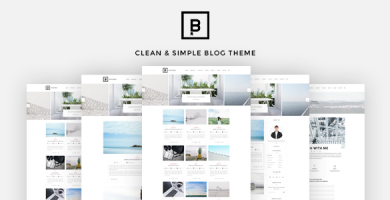 قالب BasicMag - پوسته وردپرس بلاگ شخصی
