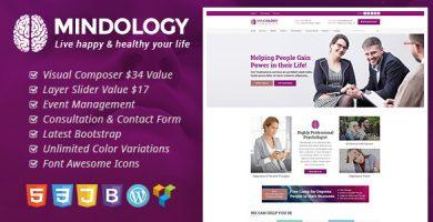 قالب Mindology - قالب وردپرس برای روانشناسان و درمانگران