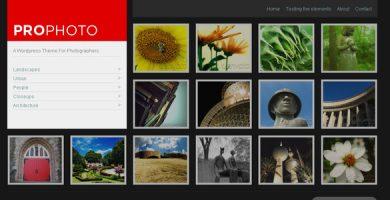 WP ProPhoto - یک قالب وردپرس برای عکاسان