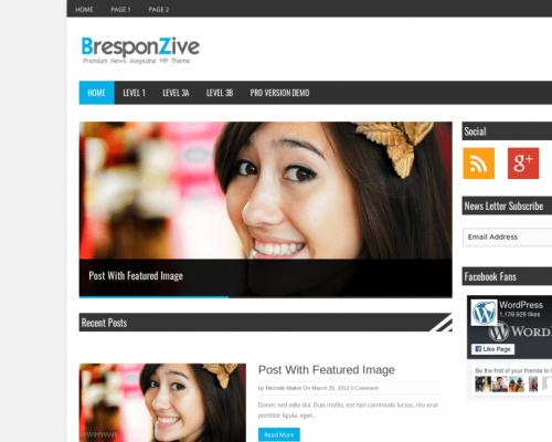 دانلود رایگان قالب وردپرس BresponZive