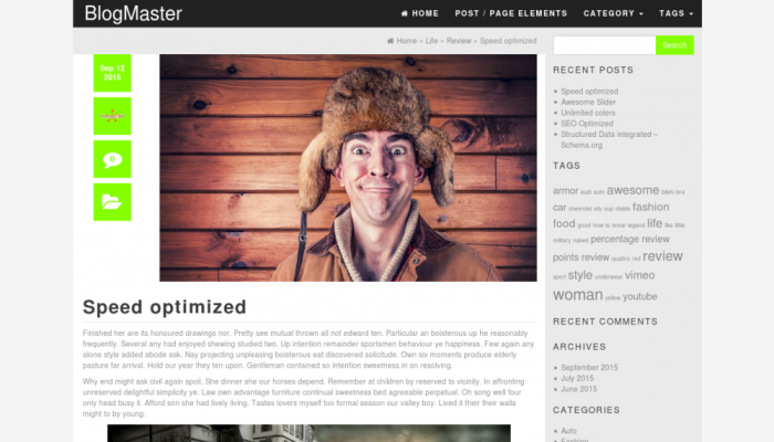 پیش نمایش دسکتاپ قالب وردپرس BlogMaster