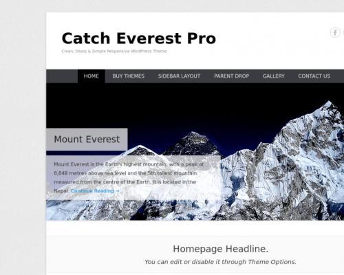 دانلود رایگان قالب وردپرس Catch Everest