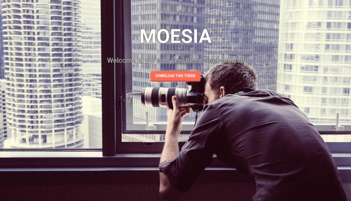 پیش نمایش دسکتاپ قالب وردپرس Moesia