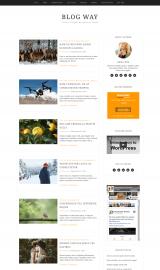 پیش نمایش موبایل قالب وردپرس Blog Way
