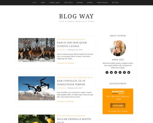 دانلود رایگان قالب وردپرس Blog Way