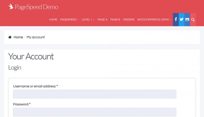 پیش نمایش دسکتاپ قالب وردپرس Page Speed