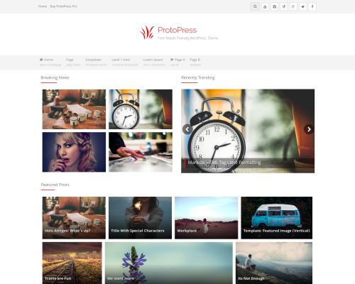 دانلود رایگان قالب وردپرس ProtoPress