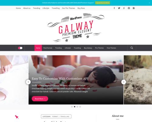دانلود رایگان قالب وردپرس Galway Lite