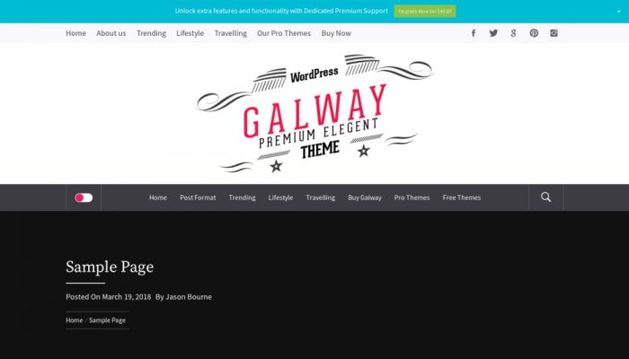 پیش نمایش دسکتاپ قالب وردپرس Galway Lite