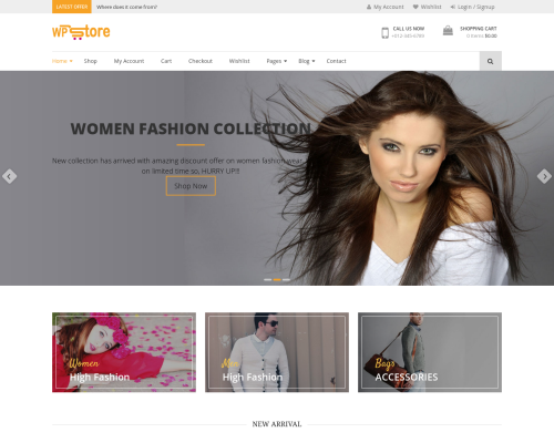 دانلود رایگان قالب وردپرس WP Store