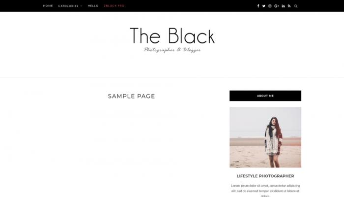 پیش نمایش دسکتاپ قالب وردپرس BlackLite