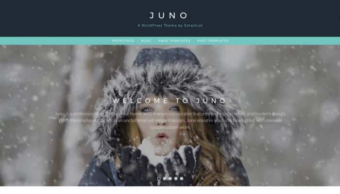 پیش نمایش دسکتاپ قالب وردپرس Juno