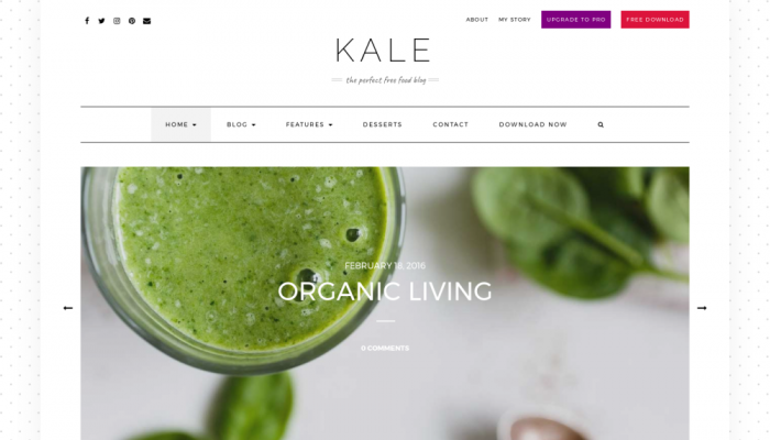 پیش نمایش دسکتاپ قالب وردپرس Kale