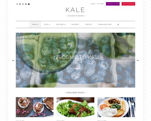 دانلود رایگان قالب وردپرس Kale