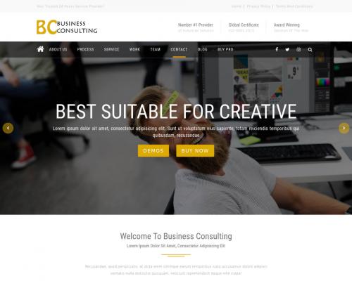 دانلود رایگان قالب وردپرس BC Business Consulting