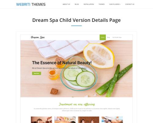 دانلود رایگان قالب وردپرس Dream Spa