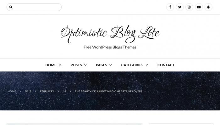 پیش نمایش دسکتاپ قالب وردپرس Optimistic Blog Lite